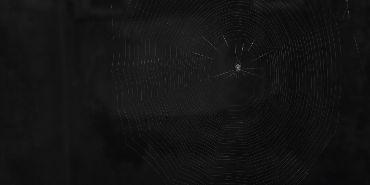 Tôi có thể tìm kiếm danh sách website Deep Web ở đâu?