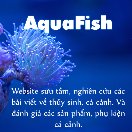 Advertisement for AquaFish.org
